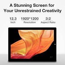 12.3 Inch 1920*1080 IPS Screen!