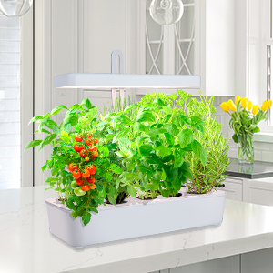 Portable Indoor Garden