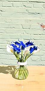 white and blue calla