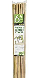 BAMBOO STAKES 6FT