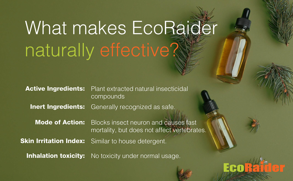 EcoRaider is naturally effective