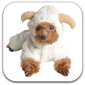 Small Dog Fleece Coat White Sheep Puppy Hoodie Chihuahua Clothing