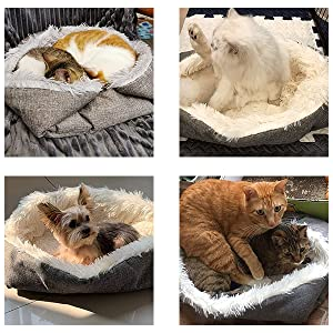 Pet Bed for Cat Small Dogs