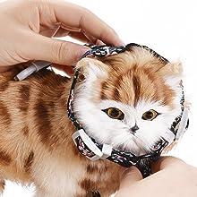 enfilier ce harnais par la tête de chat