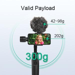 Max Payload 300g/0.66lbs