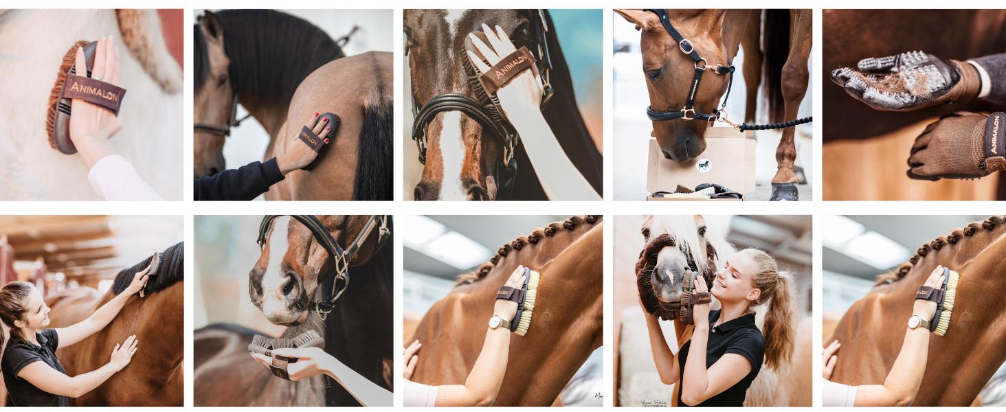 Pferdebürsten, Bürsten für Pferd, Pferdeliebe