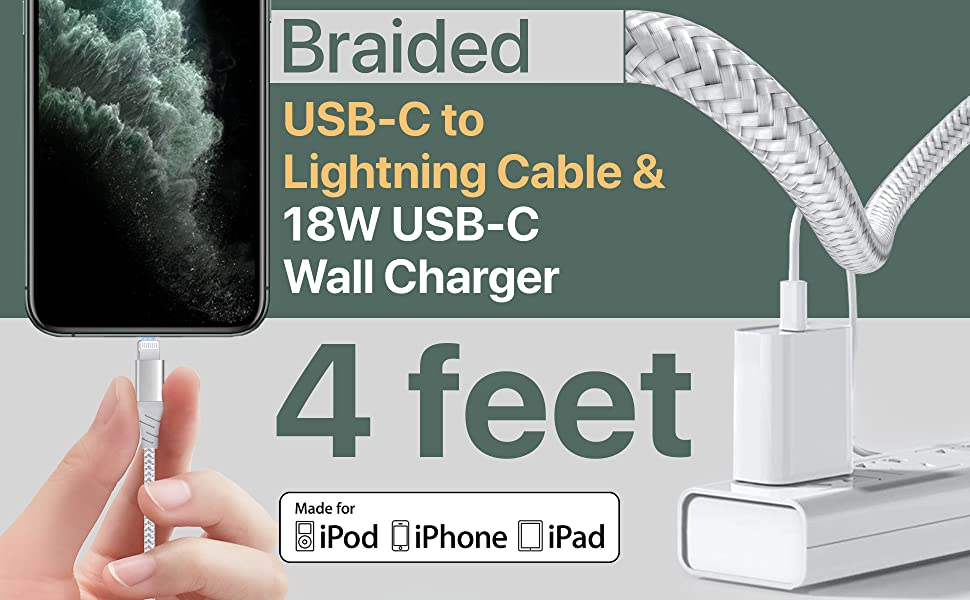 iPhone Wall Charger and Cable