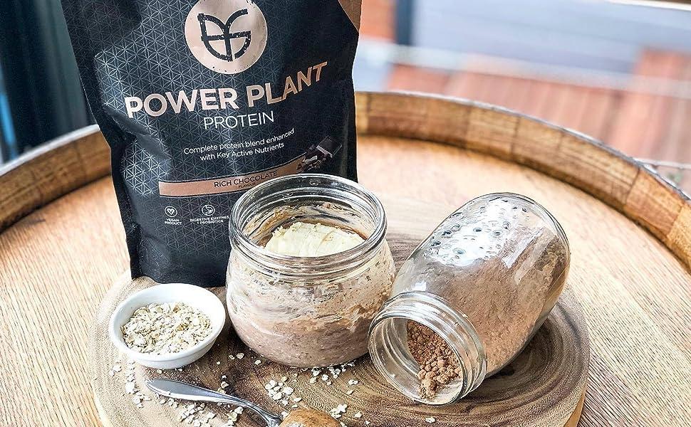 PranaOn Plant Power Protein Powder Rich Chocolate Dairy Free Gluten Free Vegan Organic Product