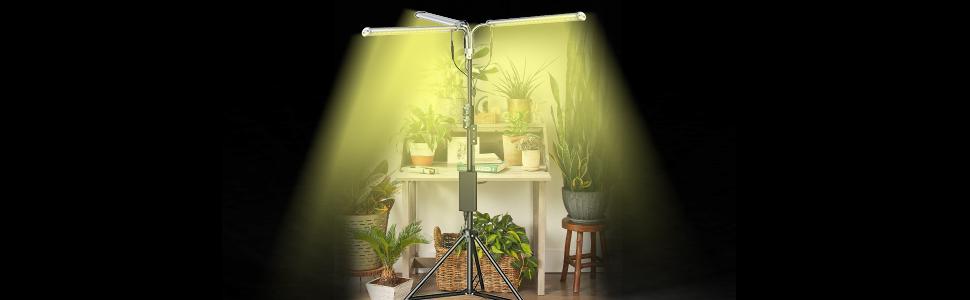 grow lamp stand