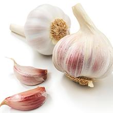 Garlic, Allium sativa, garlic bulb, immune system vitamin, dietary supplement, herbal, vegetarian