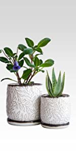 Planter Pots with Drainage Hole