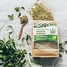 Organic Raw Hemp Protein Powder Loov