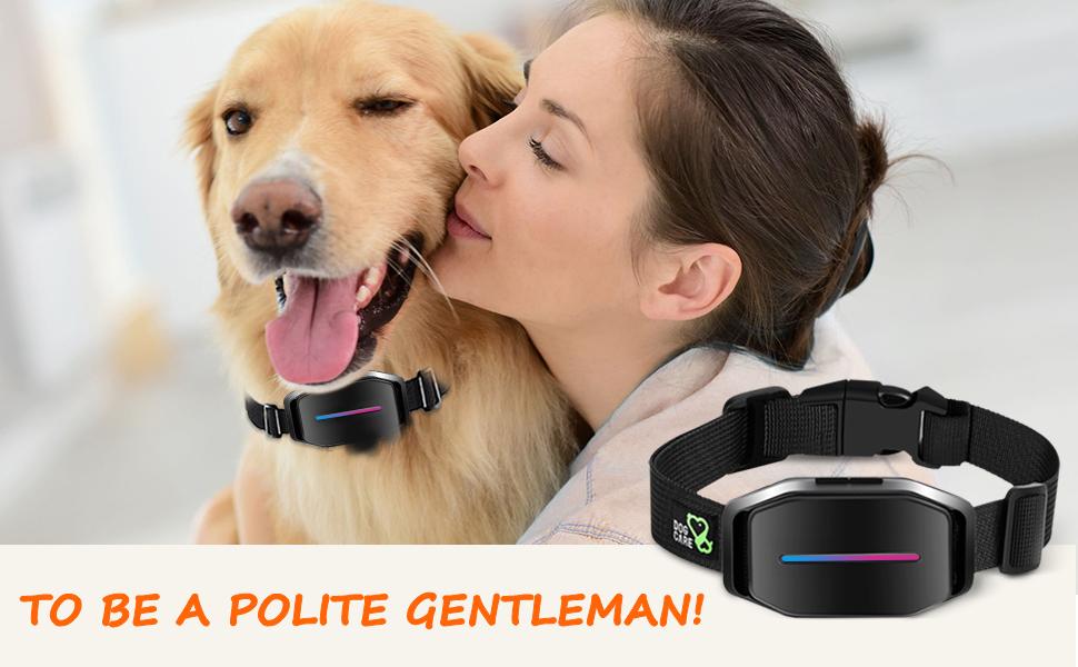 automatic shock collar for dogs bark collar medium dog bark collar large dog shock
