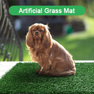grass pee pads for dogs with tray