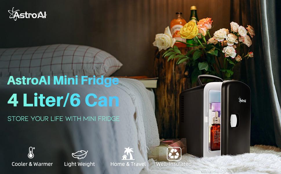mini fridges 4 litre
