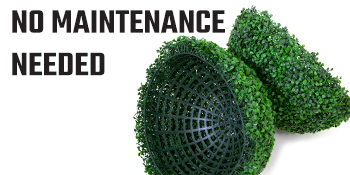 No Maintenance Needed