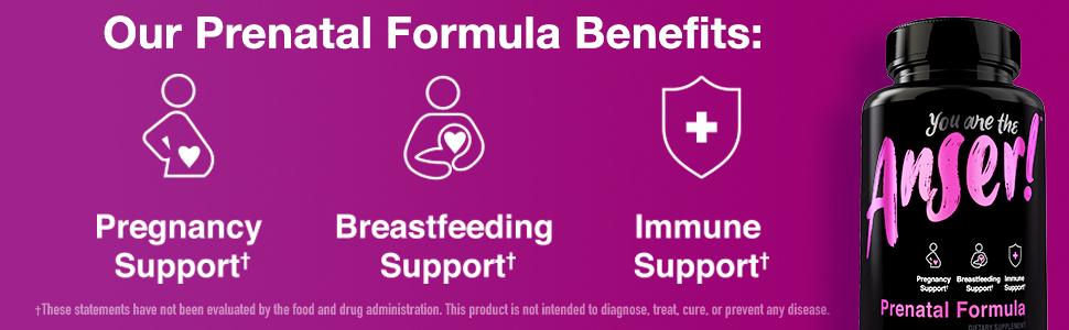 Anser Prental Benefits