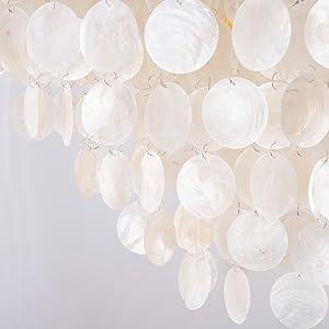 shell chandelier lighting