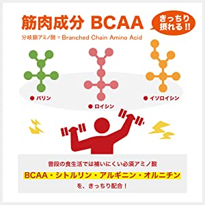筋肉成分BCAA(きっちり摂れる!!)