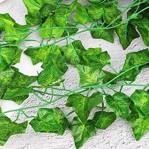 Krans falska växter