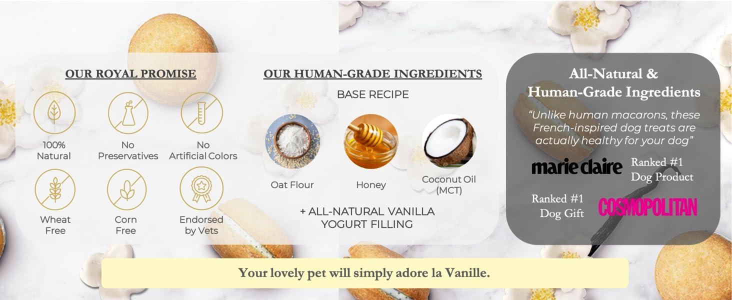 Dog Macarons macaroons vanilla treats biscuit healthy all-natural USA Handmade Honey Coconut vets