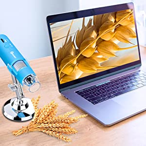 how to use with computer pc laptop.
