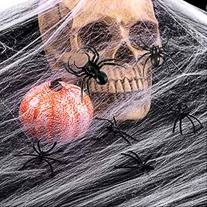 Halloween Stretch Spider Web