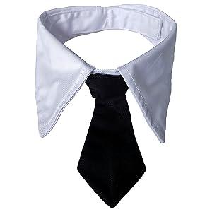 Dog Necktie