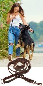Leather Dog Leashes Large Dogs