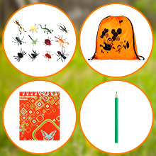 Fake Insects & Backpack