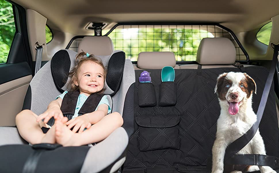 travel with dog and kids