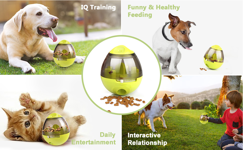 Pet Food Ball
