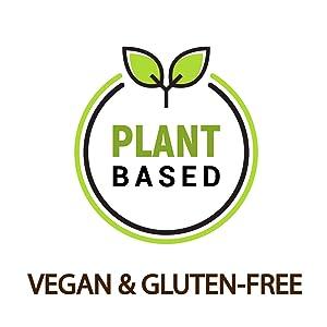 plant based vegan gluten free