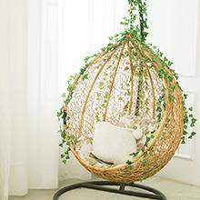 Aesthetic room decor plants