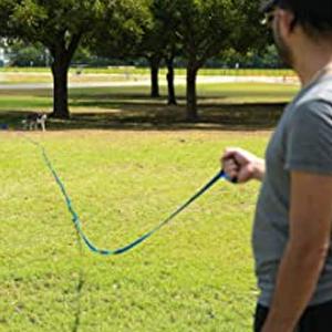 10 m dog lead
