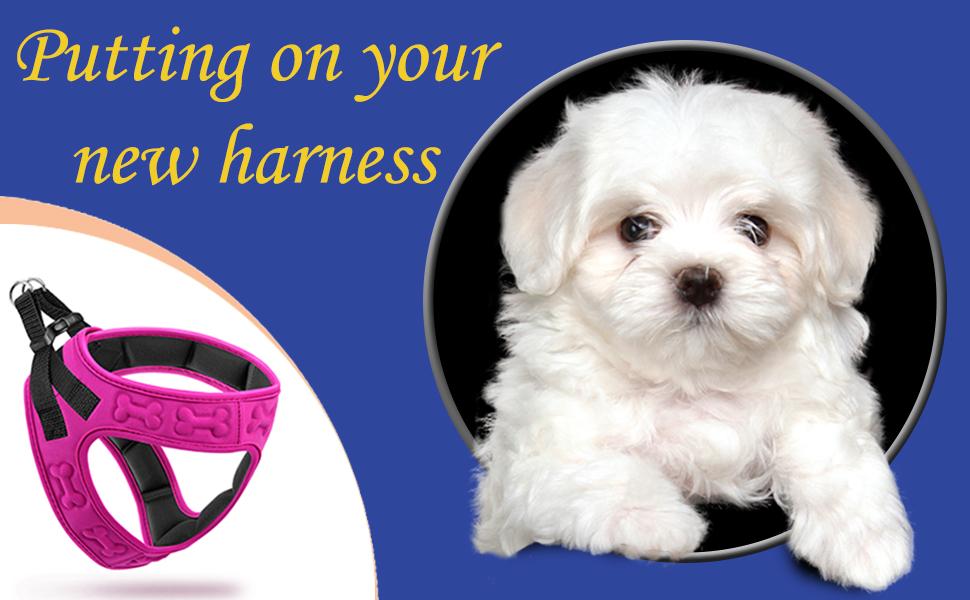 Light Weight Dog harness
