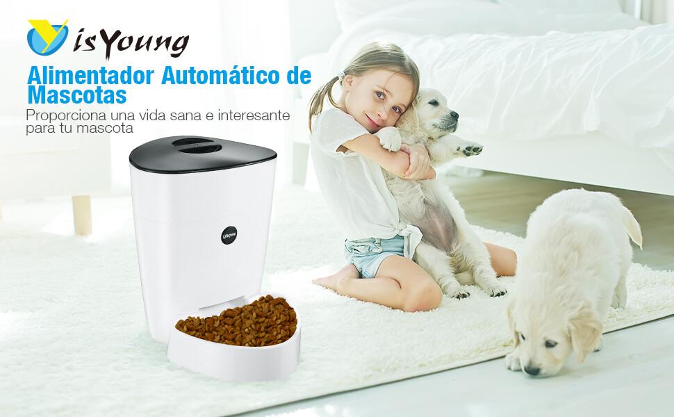 isYoung Comedero Automático 4L de Alimentos para Mascotas Gatos y ...