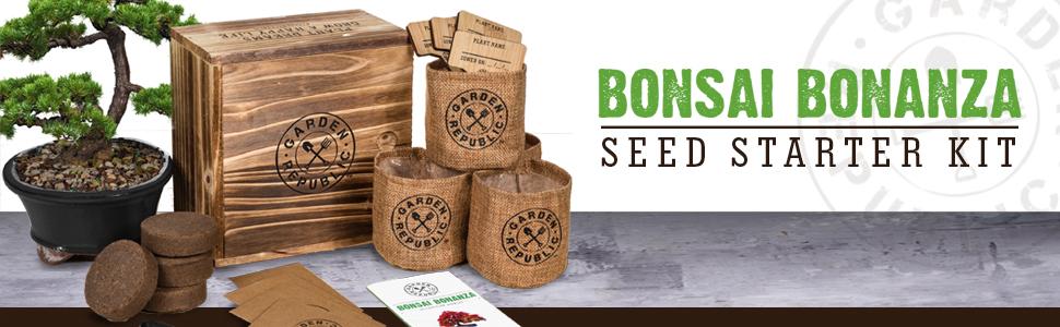 bonsai bonanza kit