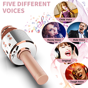 microphone for kids adults