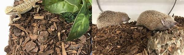 爬虫類や小動物用の天然床材