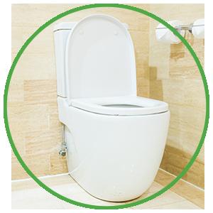 toilet seat disinfectant spray