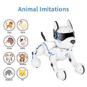 Animal Imitation