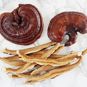 Organic red reishi mushroom medicinal superfood drink blend mix extract powder healthy hot chocolate