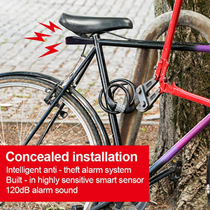 Alarm bike light