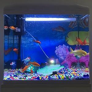 neon fish tank decorations