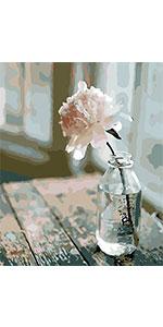 A window flower