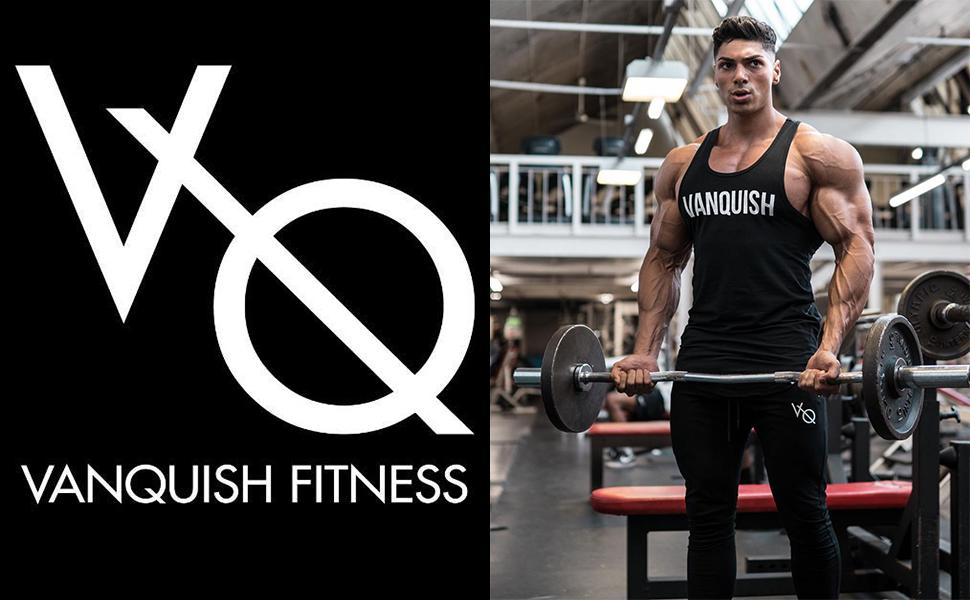 ハーフパンツ ショーツ メンズ正規品 業界No.1 ウェイトトレーニングウェア フィットネスアパレル スポーツウェア ジムウェア ヴァンキッシュ Fitness  Vanquish フィットネス 筋トレ VQ 筋肉