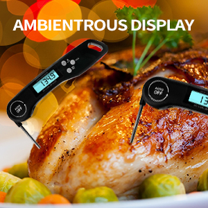 digitala kötttermometer