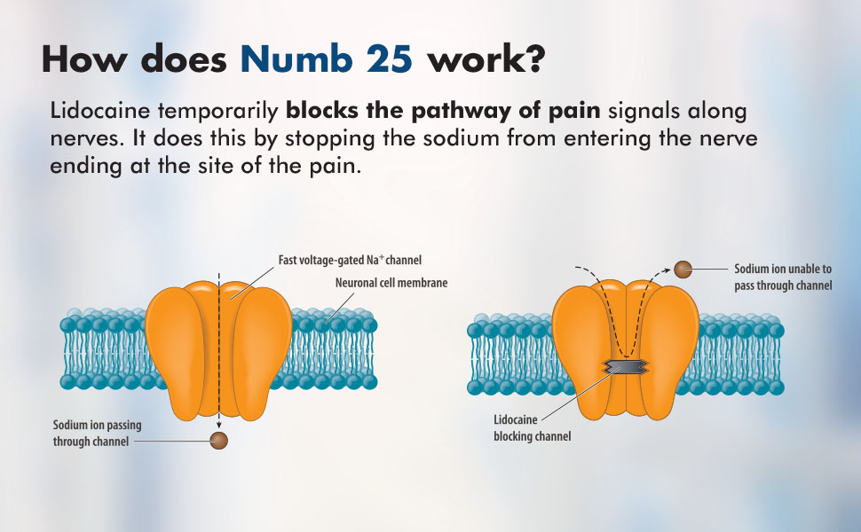 How does Numb 25 work
