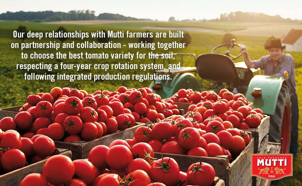 mutti partnership with farmers